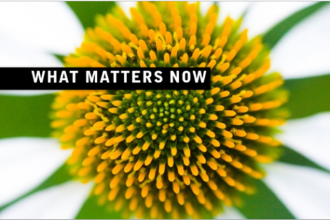 What Matters Now – Ebook